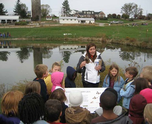 Students learn about metamorphosis and habitat at the Birds & Butterflies station.