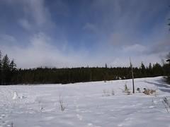 水, 2012-02-22 11:50 - ゴルフ場に積もった雪