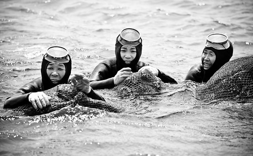 Jeju's Grandma Divers #4 [Explored #73 and Front Page]