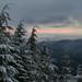 Tiger Mountain - Nov 19, 2011