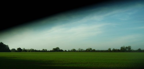 trees green field east anglia