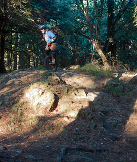 Mike on north fork of Big Trees | by Tom Holub