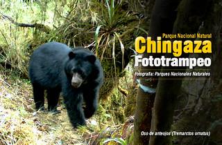 Fototrampeo En El Parque Nacional Natural Chingaza Flickr