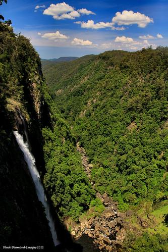 waterfall australia nsw bdi ellenboroughfalls midnorthcoast elands manningvalley bulgaplateau australianwaterfalls manningvalleytourism elenboroughfallsreserve boorgannaflorareserve