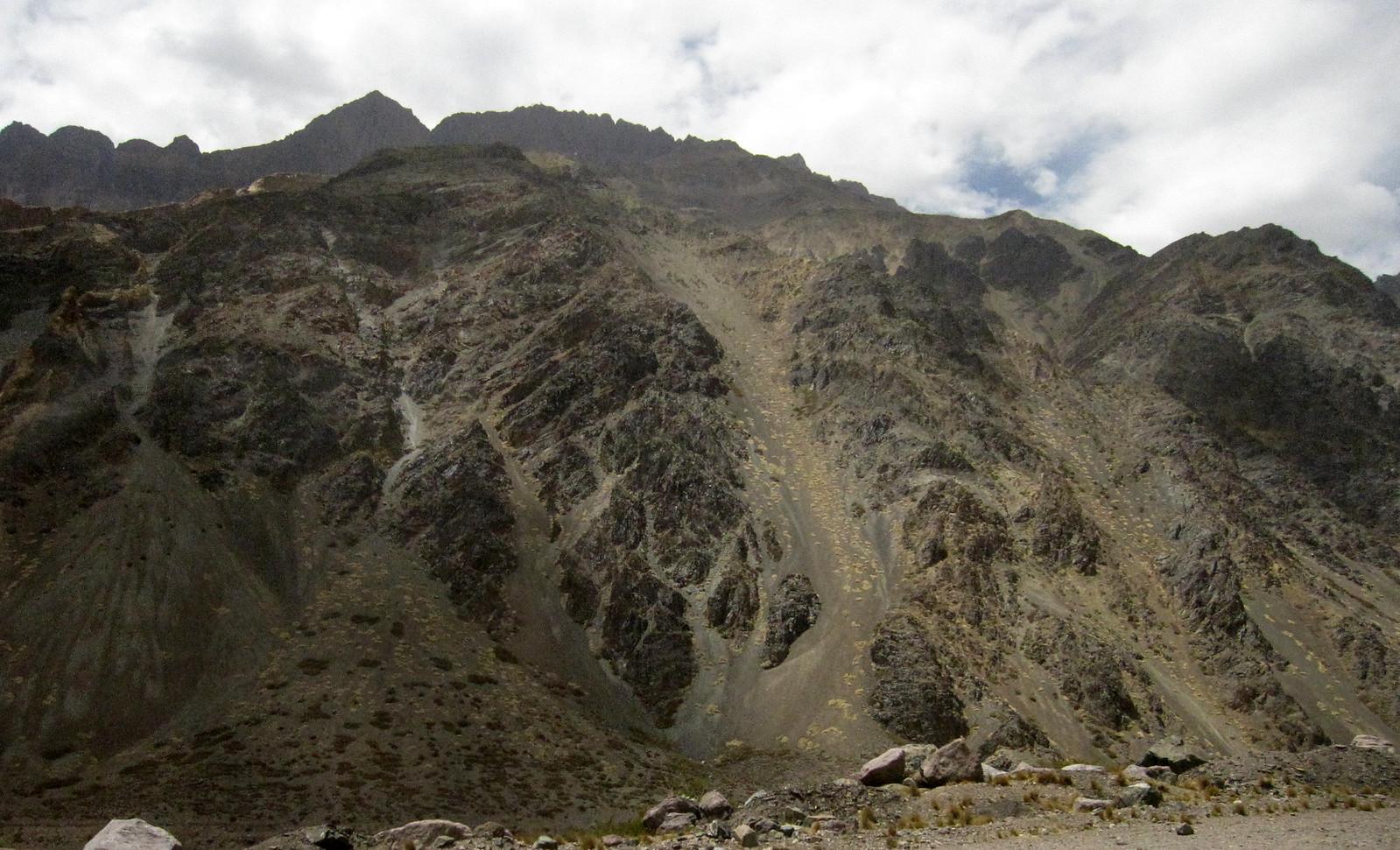 Mendoza 329