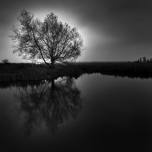 wicken fen cambridgeshire lovely british weather autumn fens landscape dark roryobryen messsucher copyrightroryobryen blackandwhite noiretblanc leica waterislife lifeiswater elaguaesvida somosagua sinaguanohayvida withoutwaterthereisnolife wearewater