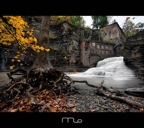 ny newyork abandoned canon landscape waterfall roots ithaca powerplant fingerlakes sixmilecreek sycamoretree photomo wellsfalls businessmanslunchfalls mikeorso