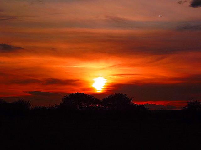 Sunset In Cleadon Village