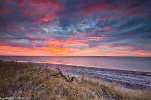 travel beach newjersey waves explore islandbeach islandbeachstatepark jerseyshores nikond7000 karankauchhur