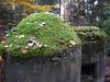 Bunkr v lese nedaleko Starého Berštejna, foto: Petr Nejedlý