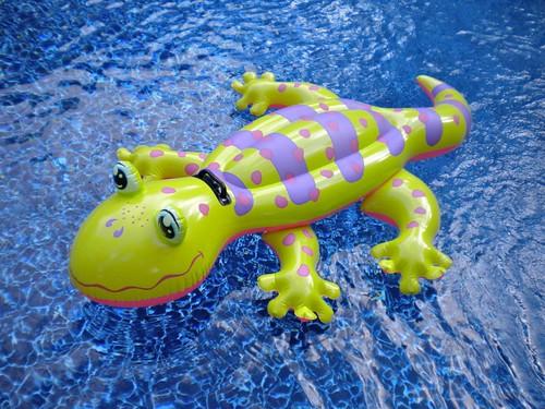 Floating Pool Toys - Lizard
