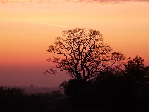 autumn sunrise wales northwales uk morning tree orange silhouette sky cloud wrexham thecull 500px