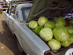 Lada loaded with Cabbage