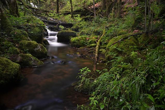 rivière le beuletin
