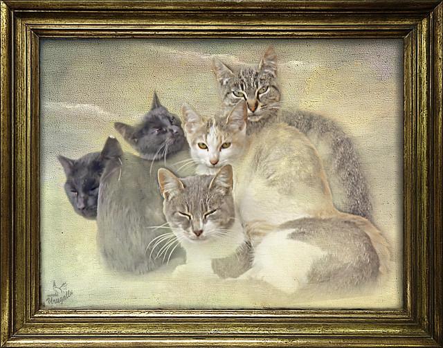 La familia unida (No es un cuadro, es fotografia)