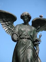 Bethesda Angel