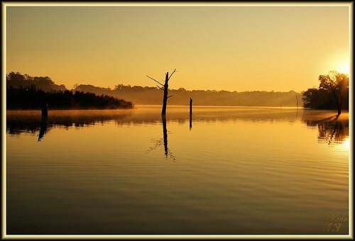 sunrise gold texas bayou pasadena tones armandbayou wanam3