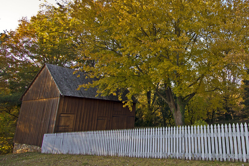 white picket fence & shed