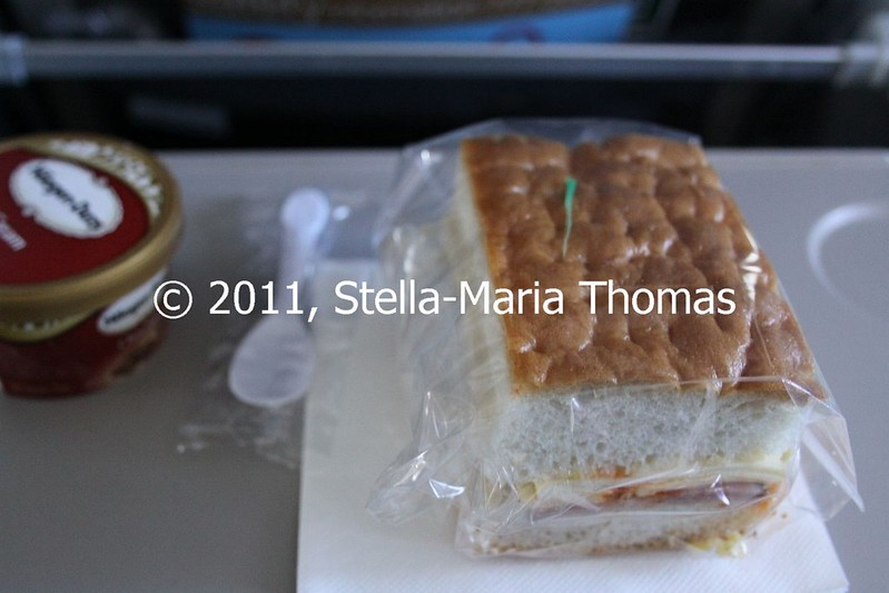 IN FLIGHT FOOD 007