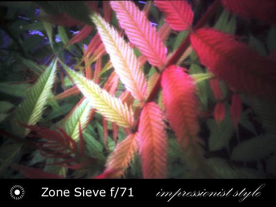 zs24-f71-07