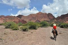 Passejada pels voltatns de Tupiza a cavall