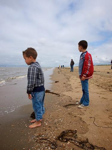 Kinderen bij de zee   by ednl