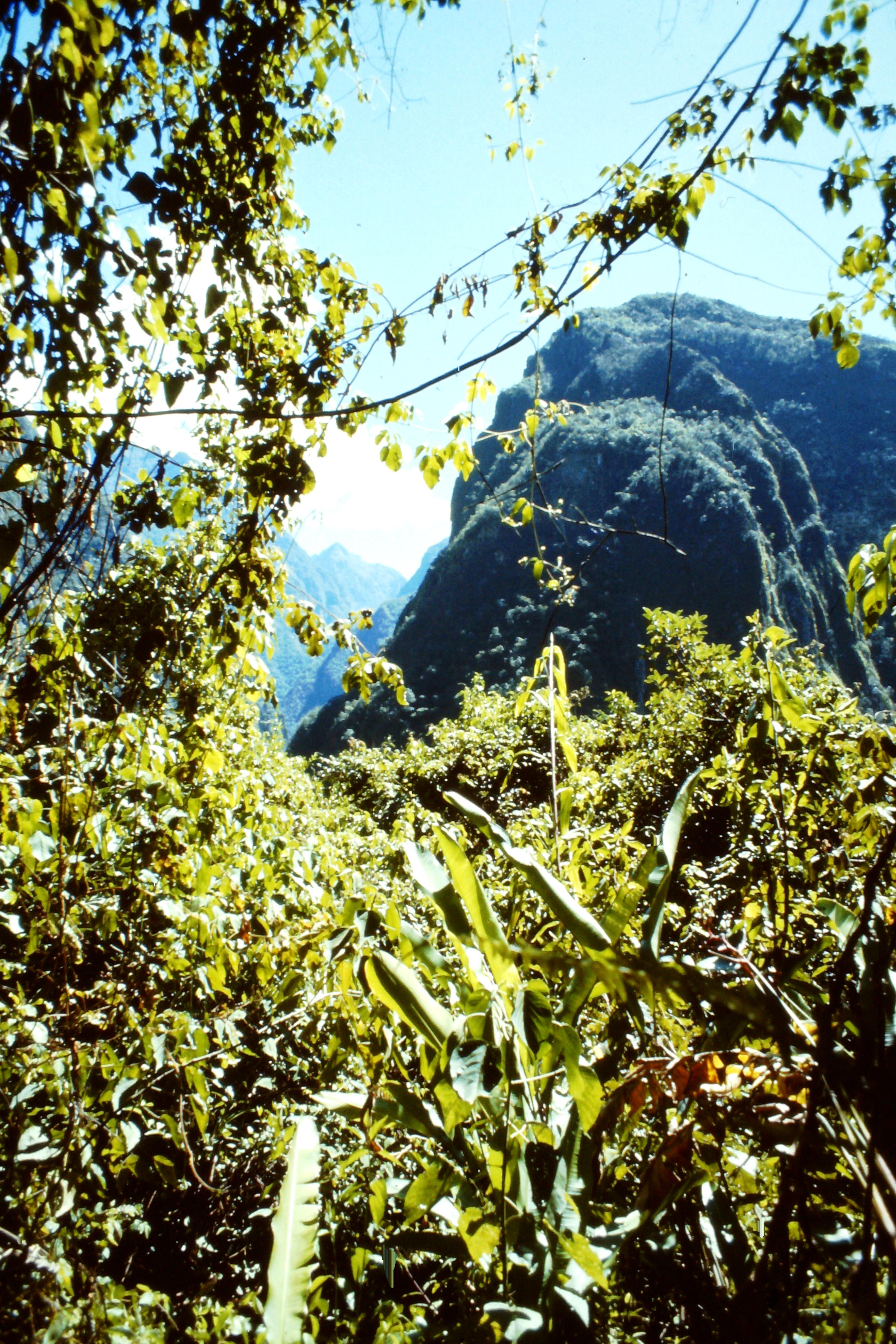 views from Machu Picchu, Peru