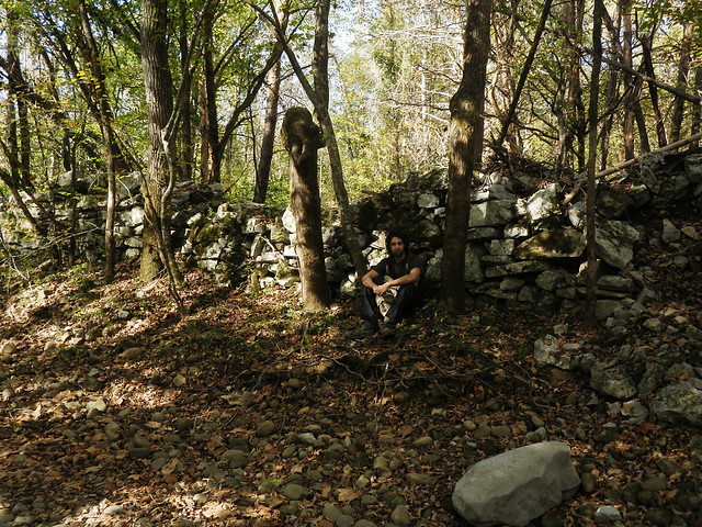Stacked stone wall, Big Bottom area, White Co, TN