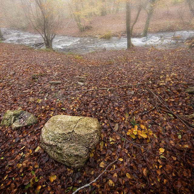 La piedra del camino