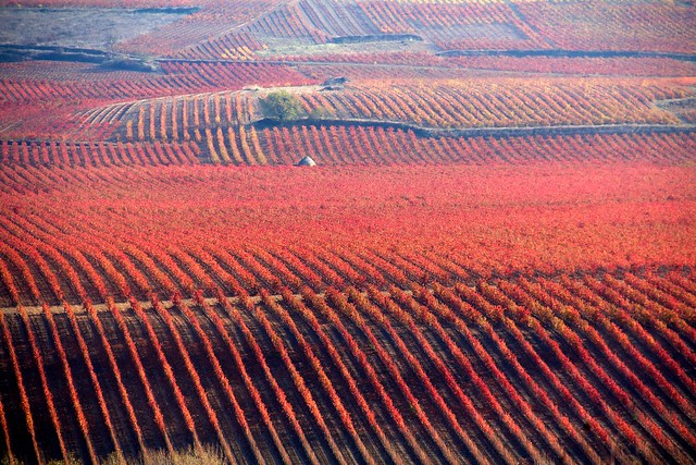 View from near La Estrella, La Rioja 3