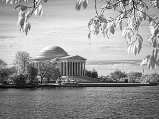Jefferson Memorial from across the Tidal Basin   by Ed Rosack