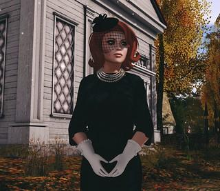 Autumn Widow