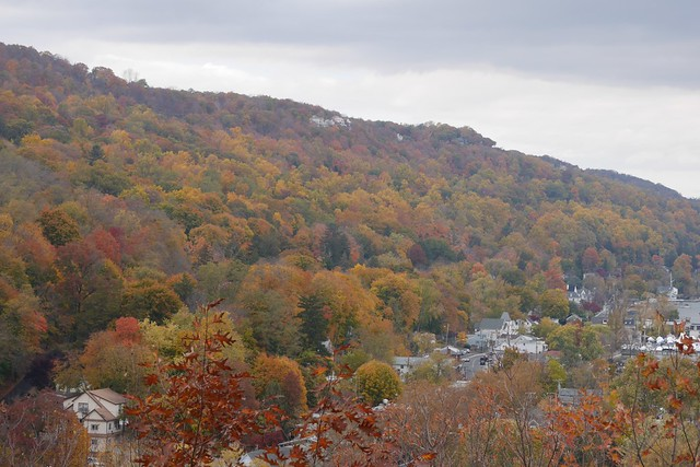 日, 2015-11-01 14:03 - View from Tillman Mountain State Park