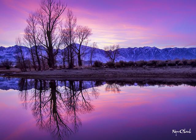 Farmer's Pond Sunrise at Bishop, California