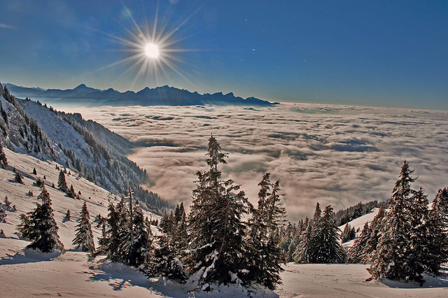 Swiss winter time, above the sea of clouds. No. 6383.