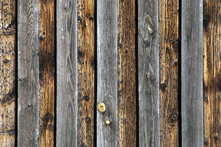 texture - weathered pine boards | by Kalense Kid