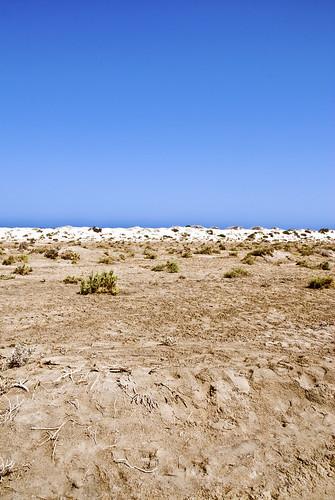 Desert   by dtrimarchi