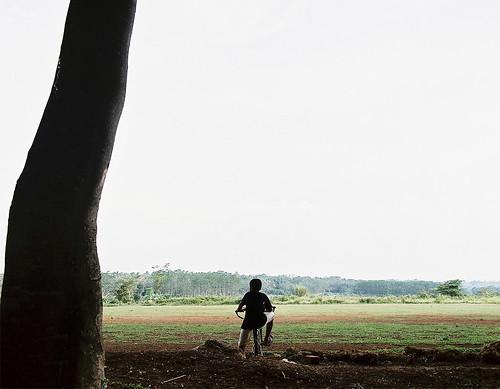 boy tree mamiya bicycle landscape kodak under pros medium format 6x7 indah 120mm 160 citra rb67 65mm sekor ektacolor jonggol