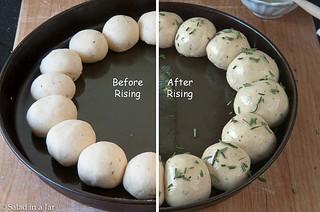 raw ring of rolls.jpg | by Salad in a Jar