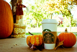 339: Pumpkin Spice Love | by niseag03