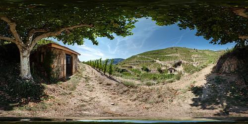 panorama france vineyard vines wine shiraz stitched 360x180 syrah ciras northernrhone ptgui tainlhermitage canon1740mm nodalninja3 jamesbusby cavedetain canon5dmk2 garretveley originsofaustralianwine frickinawesomeplacetovisit