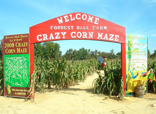 Forrest Hall Corn Maze, Mechanicsville