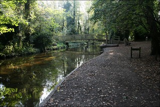 The River Darent at Lullingstone Country Park