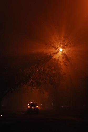 light dark shadows rays smoke fog smog rain festival fireworks tree street lamp deepavali diwali madras chennai tamilnadu india indianness ravages chandrachoodang night climate weather city weeklyflickr portfolio cityscape flickris10 flickris10yearsold 10yearsofflickr flickr10 haze