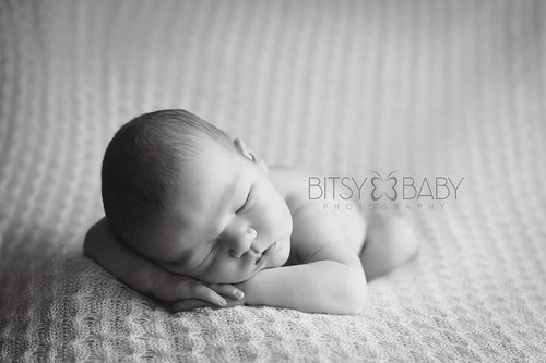 newborn photograph bw | by Bitsy Baby Photography [Rita]