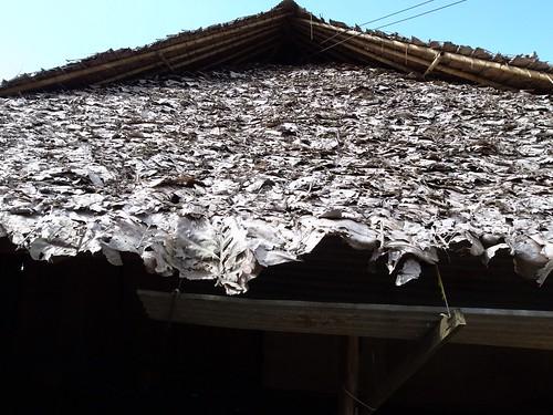 なんと、葉っぱ葺きの屋根。所々で見ました   by Yasuo Kida