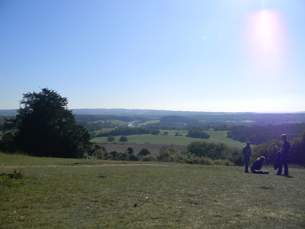 View from Newlands Corner Guildford to Horsley