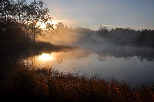 morning blue autumn trees light shadow sky orange mist lake black cold fall water beauty weather fog sunrise silver dark season gold october day bright glory seasonal silhouettes glorious rays awe beams sunbeams meadowlake mortonarboretum