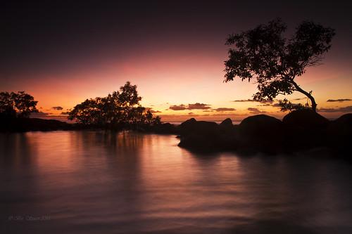 sky reflection tree pool sunrise skies australia mangrove queensland portdouglas sigma1770f28 canon7d australiatrip2011