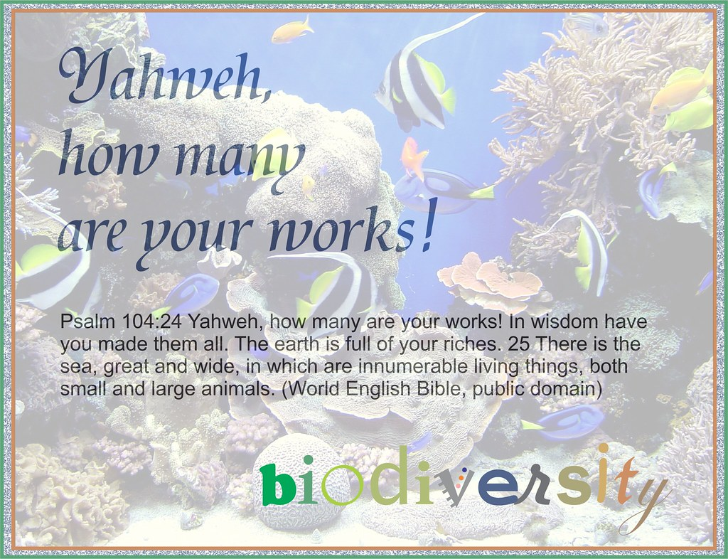 Yahweh, how many are your works: Psalm 104 biodiversity po